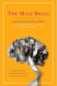 book cover of a brain made from gaffer tape, entitled 'The Male Brain'